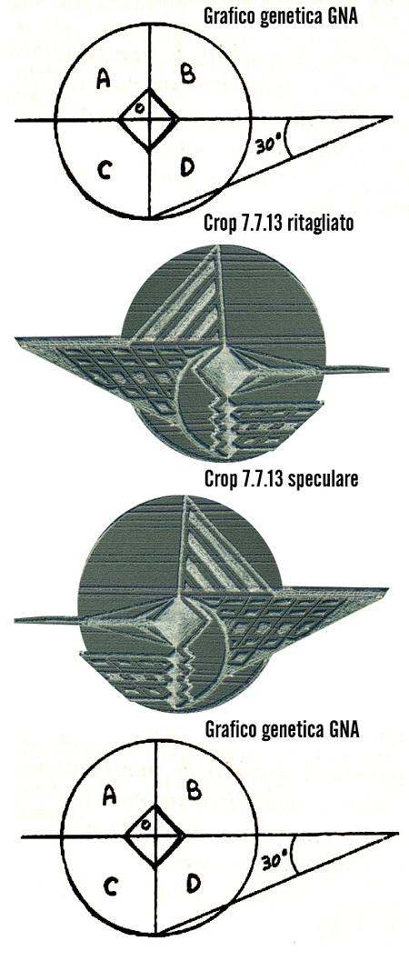 grafico GNA-crop-confronto-speculare450