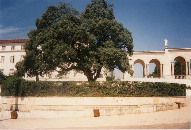 Portogallo - Fatima 2 Settembre 1989