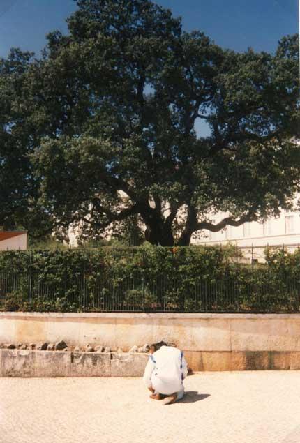 2 settembre 1989 Giorgio di fronte alla quercia di Fatima